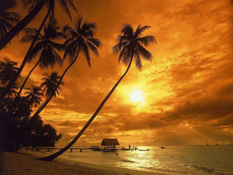 Карибские острова - отдых в 2019 году