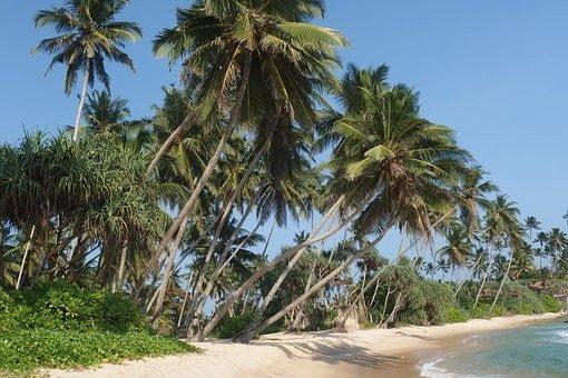 Отели Шри-Ланки