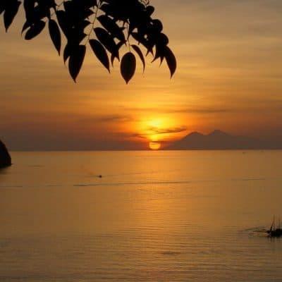 Сулавеси — остров-орхидея