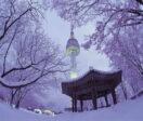 Отдых в Сеуле зимой