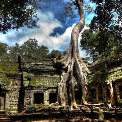 Интересные места Камбоджи: храм Та-Пром
