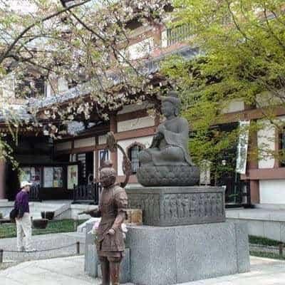 Замечательный отдых в Японии