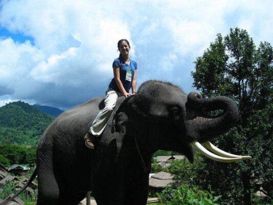 На что обратить внимание на отдыхе в Таиланде