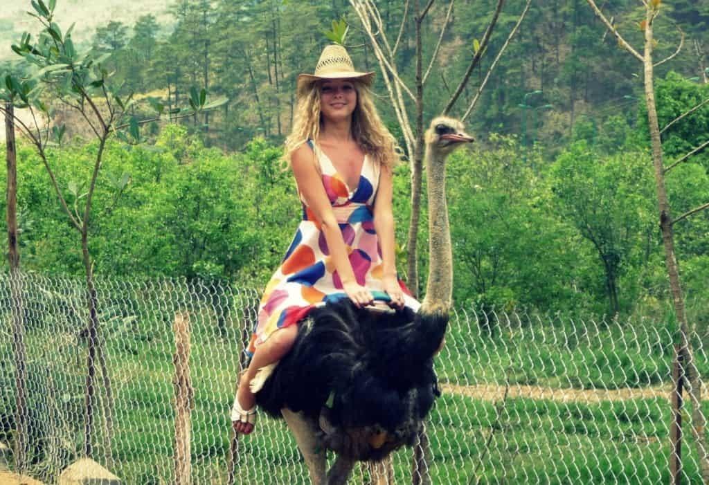 Отдых в странах ЮВА - путешествие на страусиную ферму