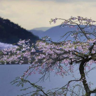 Туризм и отдых в Южной Корее: коротко о самом главном