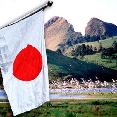 Удивительные законы Японии: о чем стоит знать туристу